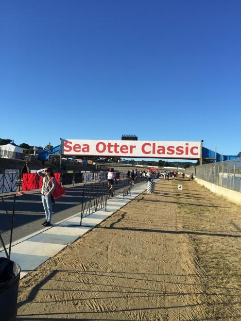Sea Otter Race Banner