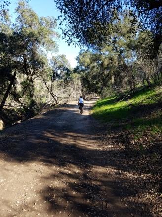 nolan-trail-far